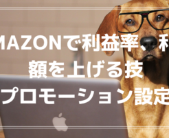 Amazonで利益率、利益額を上げる技~プロモーション設定~